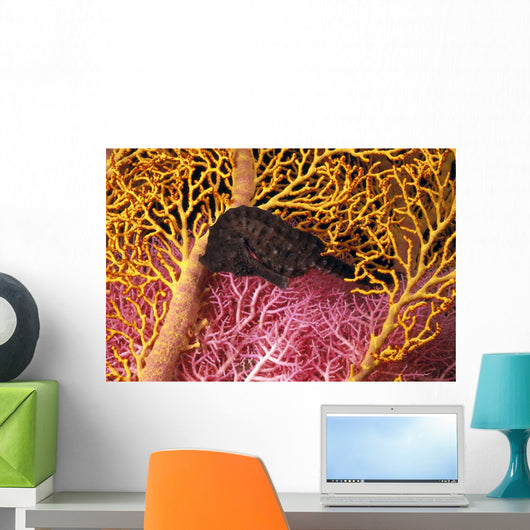 Indonesia, Seahorse Against Yellow And Pink Crinoids A90F Wall Mural
