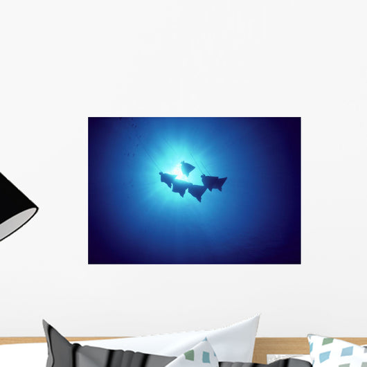 Hawaii, Spotted Eagle Leopard Rays, Silhouetted Near Surface A86G Wall Mural