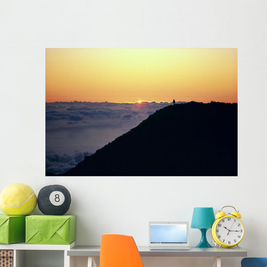 Above Clouds A46D Wall Mural