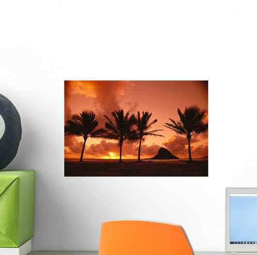 Palms Silhouetted A42G Wall Mural