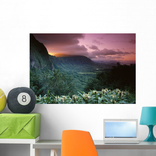 Ginger Foreground Twilight A43G Wall Mural