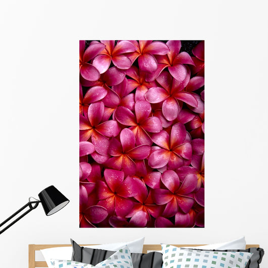 Bed Of Dark Pink Plumeria Blossoms, Overlapping A23A Wall Mural