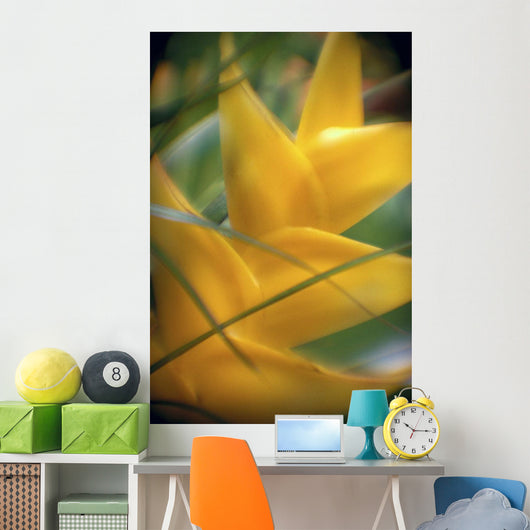 Soft Focus Detail Of Yellow Heliconia Flower On Plant A22A Wall Mural