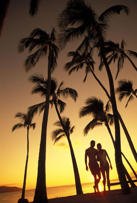Silhouette Of Romantic Couple In Park At Sunset Wall Mural
