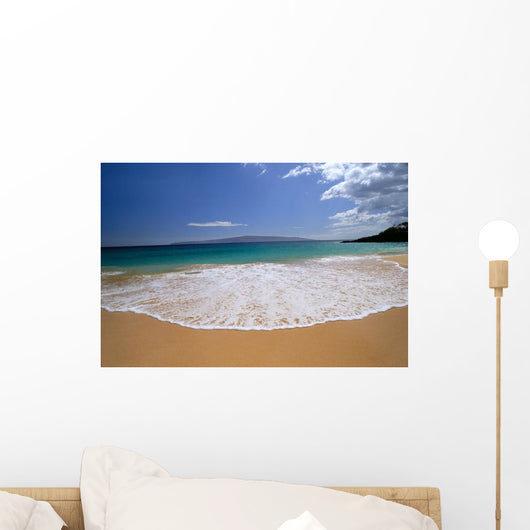 Lanai Background A47C Wall Mural