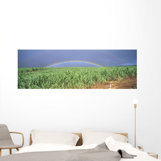 Full Length Panoramic A21D Wall Mural