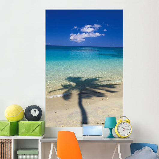 Shadow Of Palm Tree Onto Calm Beach Reef In Distance Wall Mural
