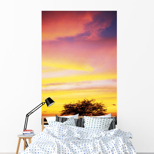 Hawaii, Big Island, Sunset At Kohala Coast Wall Mural