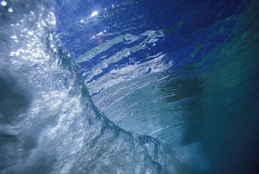 View Of A Wave From Underwater Looking At Surface Down The Curl Wall Mural