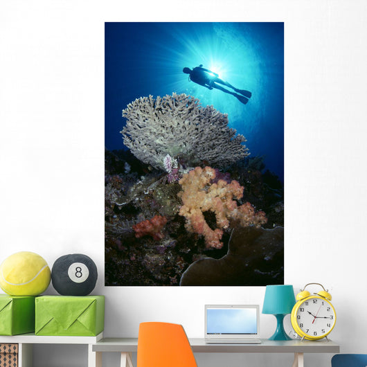 Palau, Diver With Alcyonarian And Table Coral Silhouette B1303 Wall Mural
