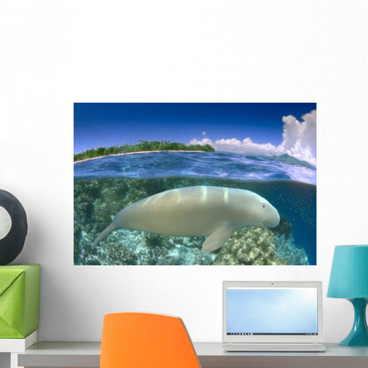 Blue Skies And Island Background Side View B1975 Wall Mural
