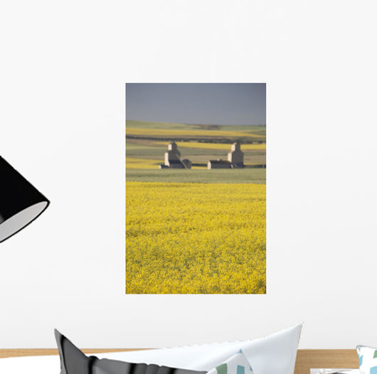 Two Old Wooden Grain Elevators At Sunrise With Flowering Canola Fields Wall Mural