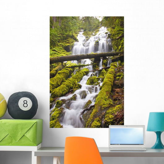 Proxy Falls In Willamette National Forest Wall Mural