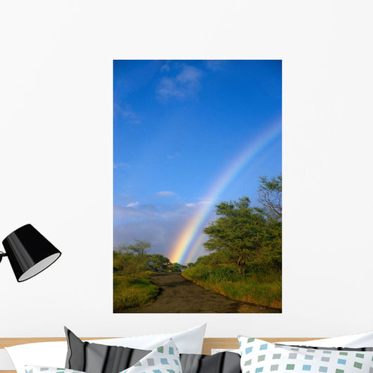 Hawaii, Big Island, North Kohala, Rainbow, Old Road, Kiawe Trees B1469 Wall Mural