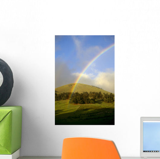 Hawaii, Big Island, Waimea, Rainbow Over Pastures B1448 Wall Mural