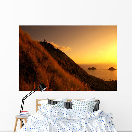 Hawaii, Oahu, Lanikai, Mountain Biking, View Of Mokulua Islands, B1241 Wall Mural