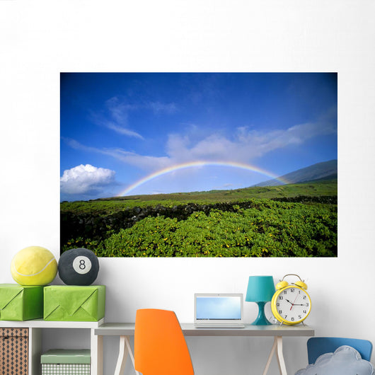Hawaii, Maui, Rainbow Over Kaupo, B1453 Wall Mural