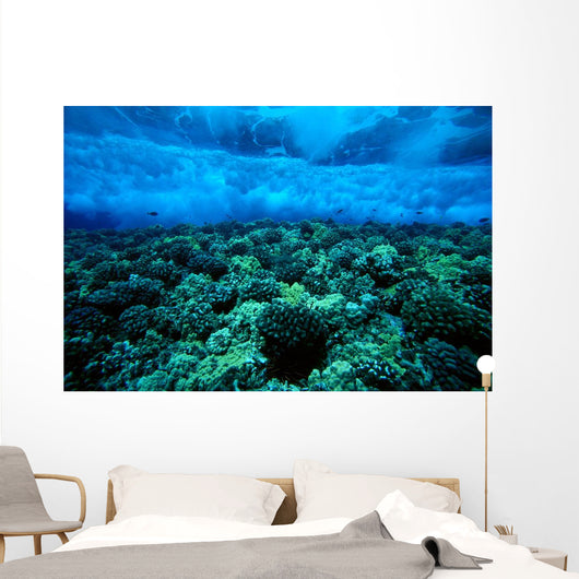 Underwater View Of Wave Breaking Over Shallow Reef B1916 Wall Mural