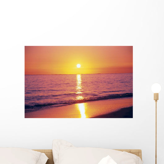 Orange Pink Sunset Sky With Sun Ball, Reflection Wall Mural