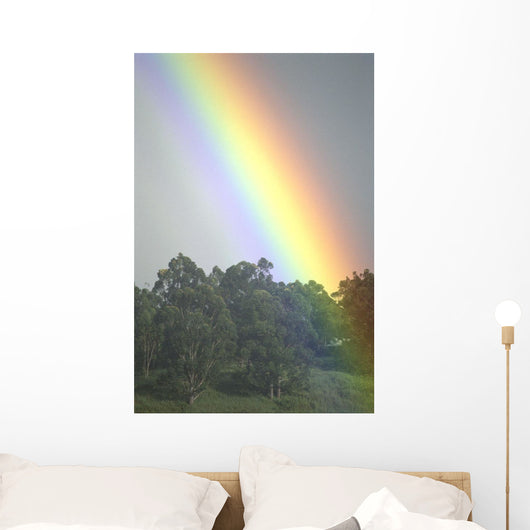 Hawaii, Maui, Haiku, Bright Rainbow In Misty Skies Over Trees C1754 Wall Mural