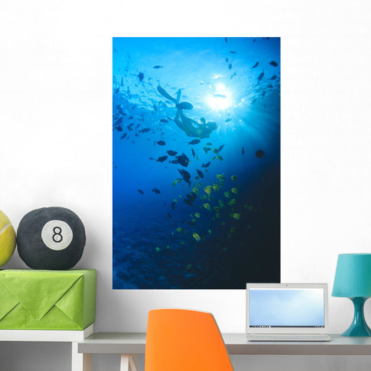 Woman Snorkeling With Reef Fish, Sunburst Through Surface Wall Mural