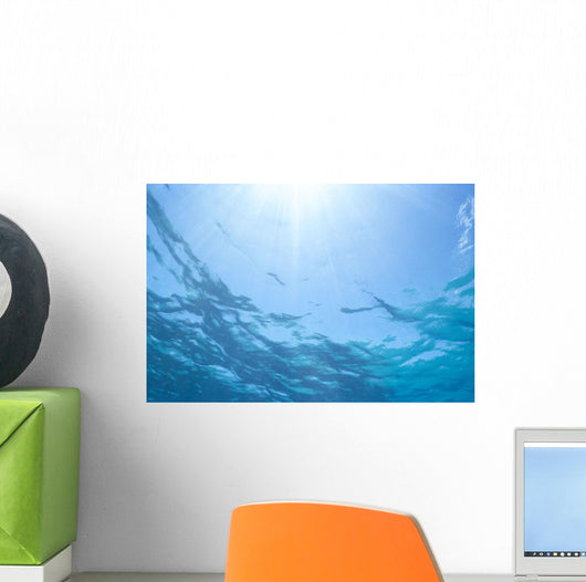 Sunrays Shine Through Surface Of Calm Water C1698 Wall Mural
