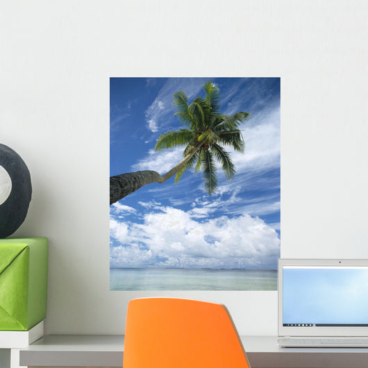 Palm Tree Over Clear Calm Turquoise Waters Wall Mural