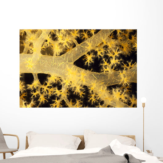 Yellow Alcyonarian Coral With Bundles Of Sclerites, Close-Up Wall Mural