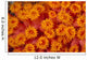 Indonesia, Close-Up Top View Of Orange Tube Coral Wall Mural