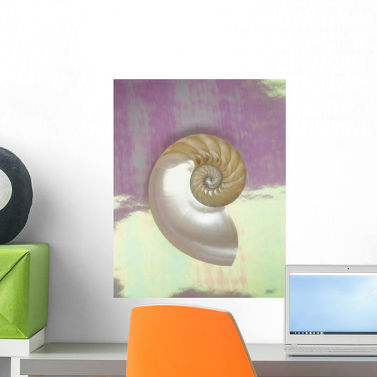 Pearl Nautilus Shell Show Chambers On Pearly Dewy Background Wall Mural