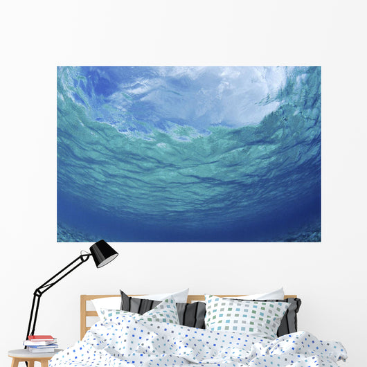Underwater Ocean Looking Upward To Surface, Blue Sky Reflection Wall Mural