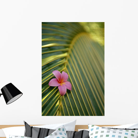 Close-Up Angled View Of One Pink Plumeria On Coconut Palm Leaf Wall Mural