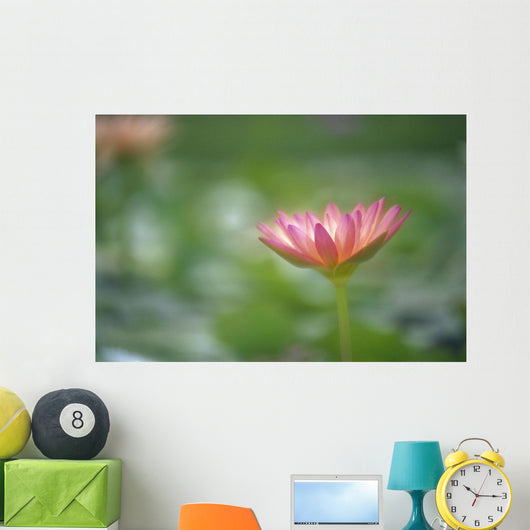 Close-Up Side View Pink Lily In Pond, Green Blurry Background Wall Mural