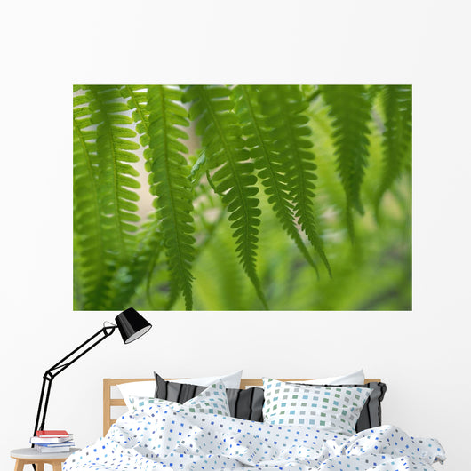 Green Blurry Background Wall Mural