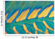 Micronesia, Bicolor Parrotfish Dorsal Fin And Scales, Detail Wall Mural