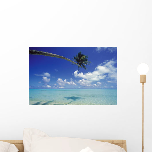 French Polynesia, Bora Bora, Palm Tree Over Turquoise Water Shadows Wall Mural