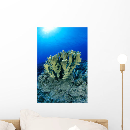 Blue Water Wall Mural