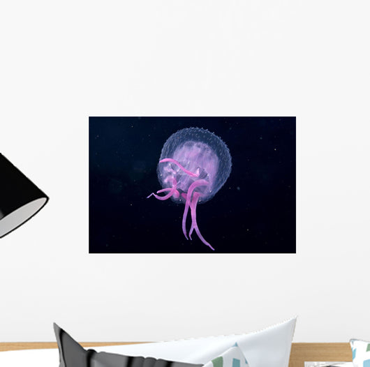 Hawaii, Pink Jellyfish Close-Up In Black Ocean Background Wall Mural
