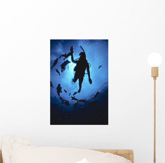 Hawaii, Silhouetted Diver And Reef Fish, View From Below, Sunburst Wall Mural