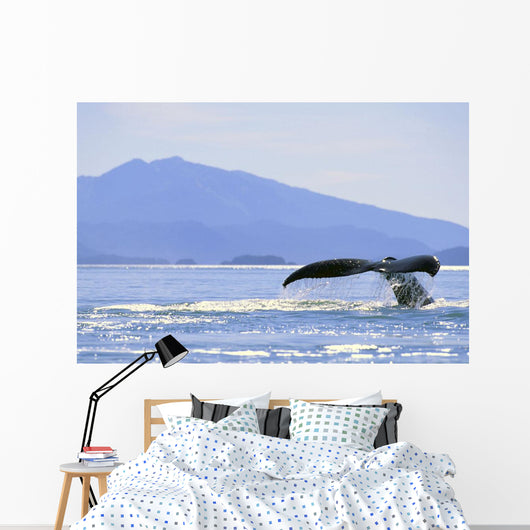 Alaska, North Pass, Humpback Whale Flukes Wall Mural