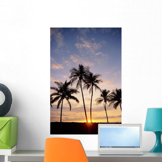 View Of Palm Trees At Sunset, Pale Blue Sky, Wispy Clouds Wall Mural