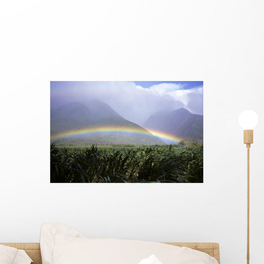 View Of Low Rainbow At Base Of Mountains, Clouds, Blue Sky, Field Wall Mural