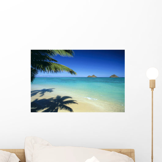 Mokulua Islands Background Palm Fronds And Shadow Foreground Wall Mural