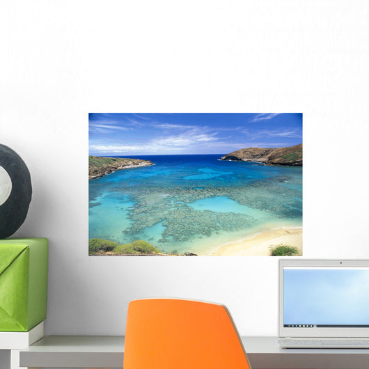 View From Above Looking Into Coral Waters Wall Mural