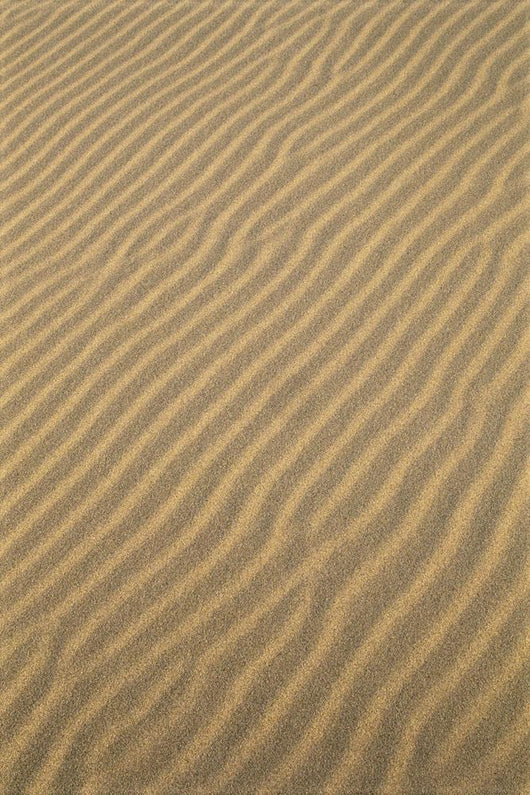 Oregon Dunes National Recreation Area, Sand Patterns, Wave Like Wall Mural