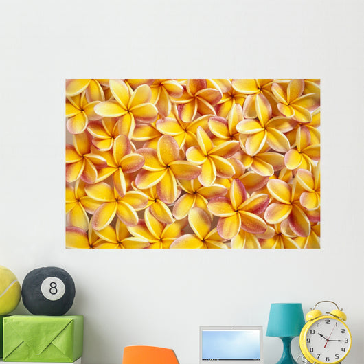 Many Red And Yellow Plumeria Flowers Spread Overlapping Wall Mural