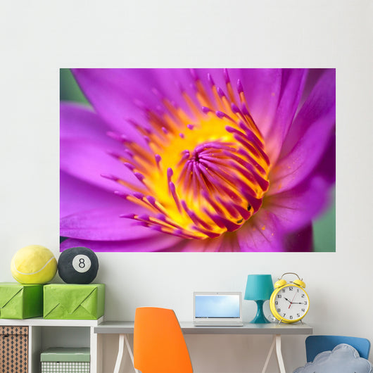 Extreme Close-Up Of Water Lily Wall Mural
