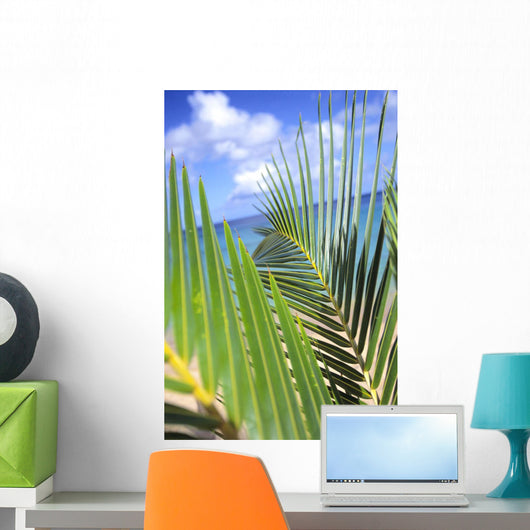 View Through Green Palm Leaves Of Blue Sky Wall Mural