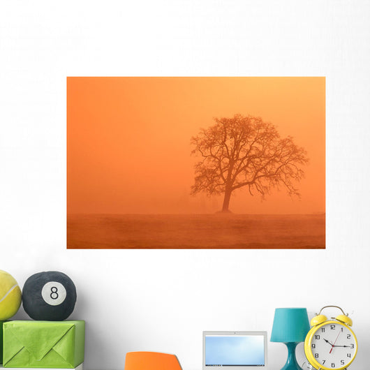 Orange Haze Wall Mural