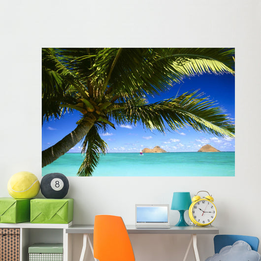 Sailboat In Turquoise Waters Wall Mural